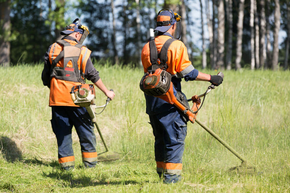 What is the Difference between a String Trimmer and a Brush Cutter