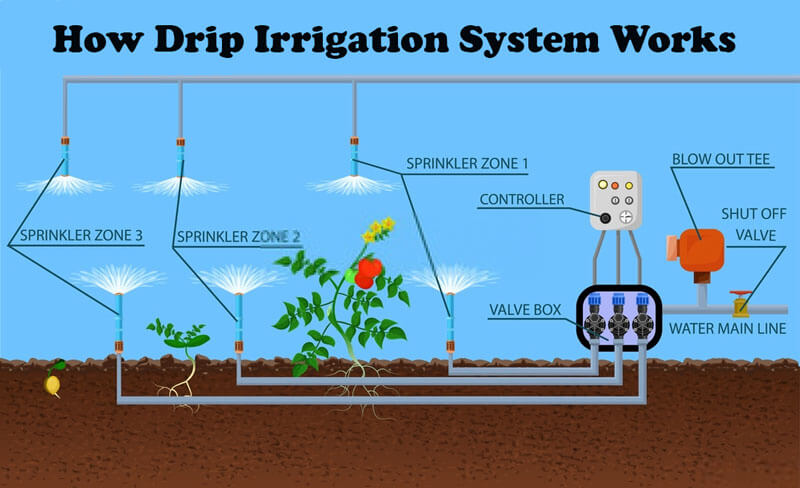How Drip Irrigation System Works