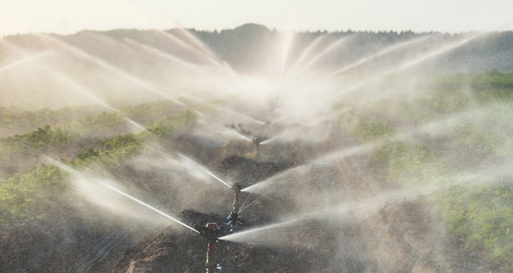 What Is Drip Irrigation System & Why Should You Use Drip Irrigation System